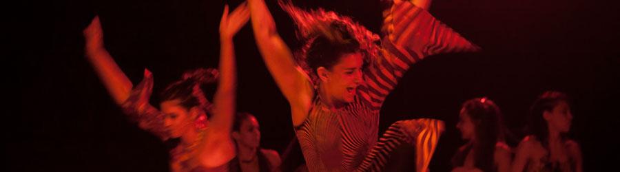 Ballet Autoconvocado Porteño (BAP)